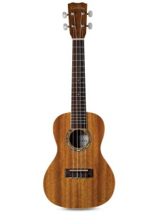 If your child is really tiny, you may want to consider starting them on this Cordoba 15CM Concert Ukulele.
